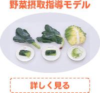 野菜摂取指導モデル