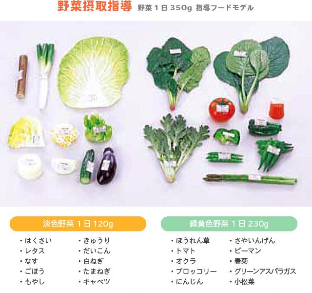 野菜摂取指導 野菜1日350g 指導フードモデル