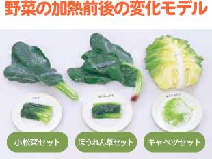 実物大の野菜モデル
